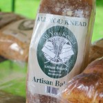 All You Knead - Fresh Artisan Breads