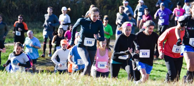 Run The Farm 2016 Report